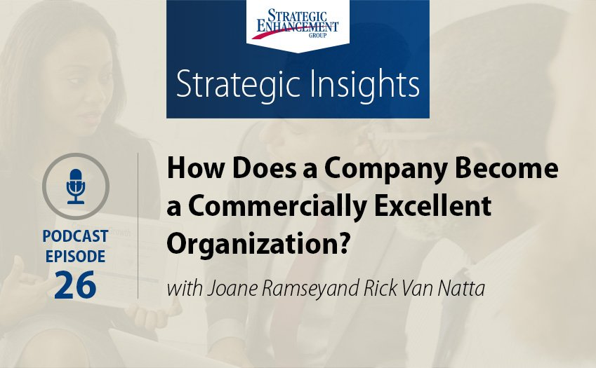 How Does a Company Become a Commercially Excellent Organization?
